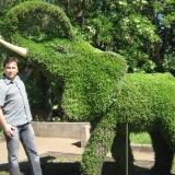 Совсем не грозный слоник в г.Орел